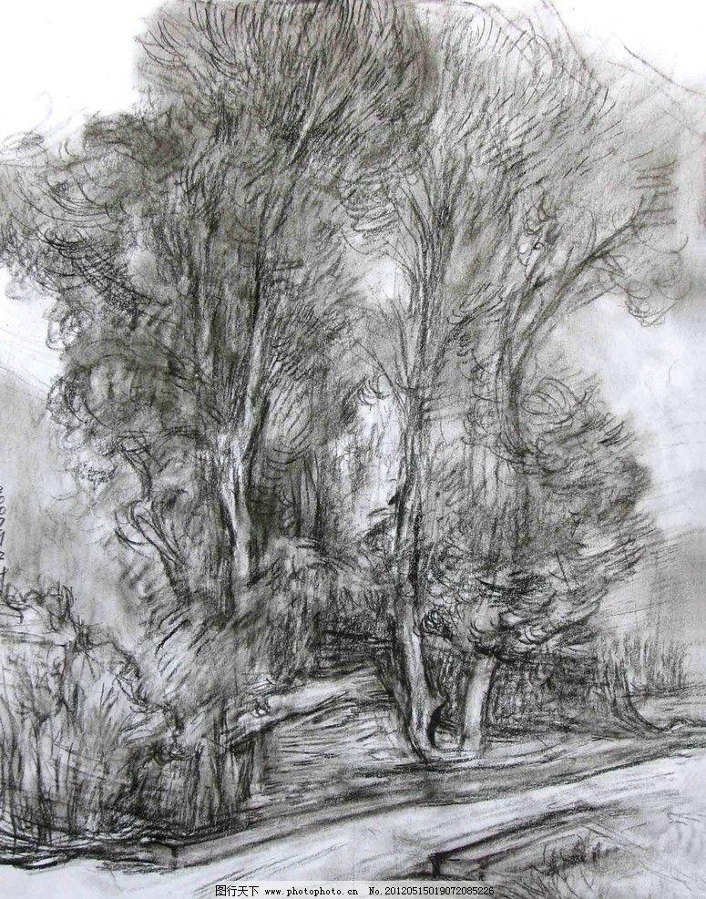 风景树木铅笔速写素材图片-李阳重走玄奘路第二季写生作品
