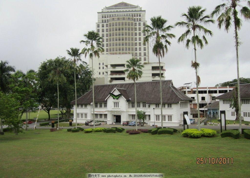 别墅 楼房 建筑 高楼 大厦 椰子树 植物 草坪 绿色植物 草皮