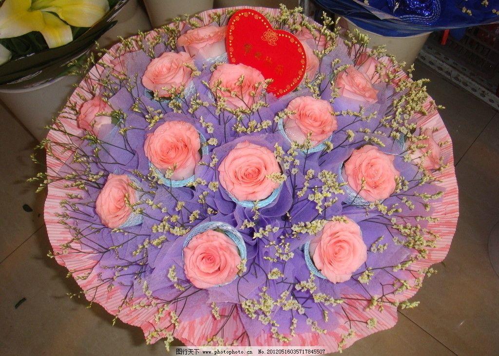 玫瑰花图片_花草_生物世界