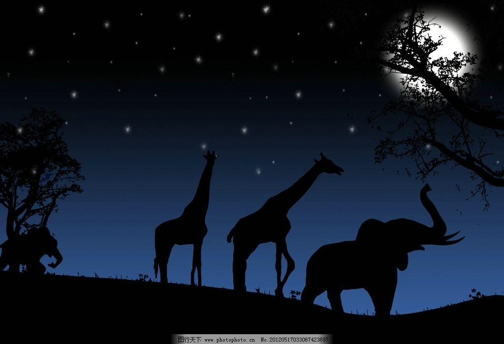 夜晚动物剪影 大象 长颈鹿