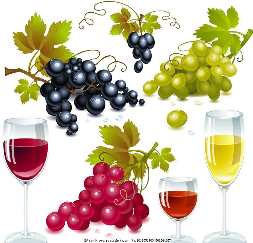 手绘葡萄葡萄酒图片