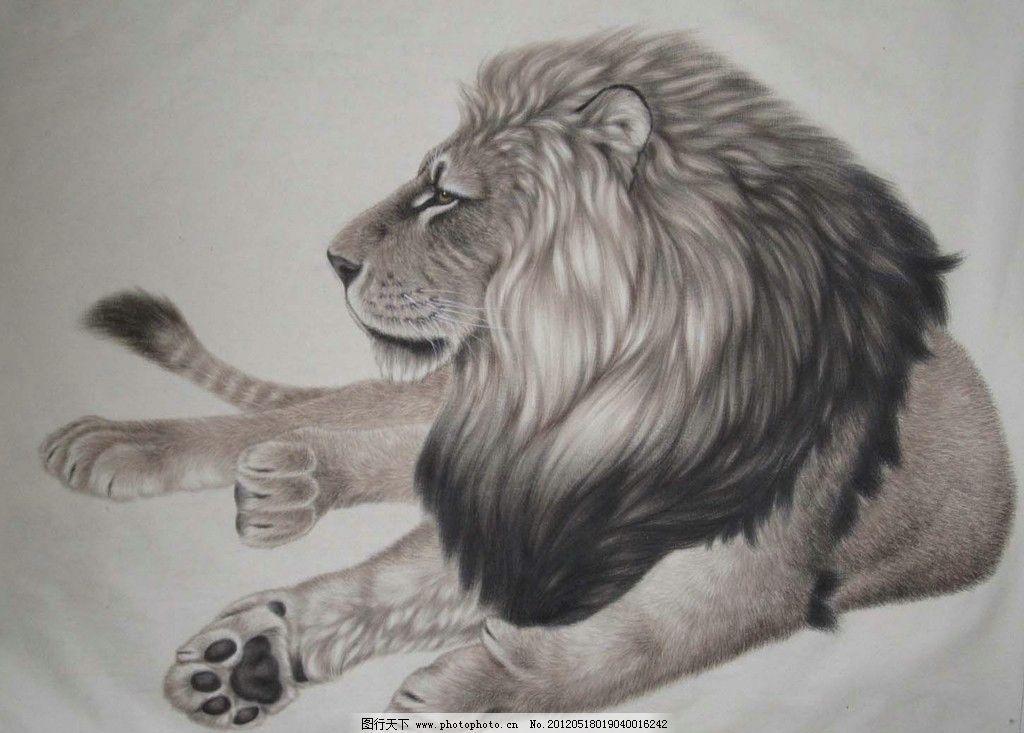 素描狮子图步骤