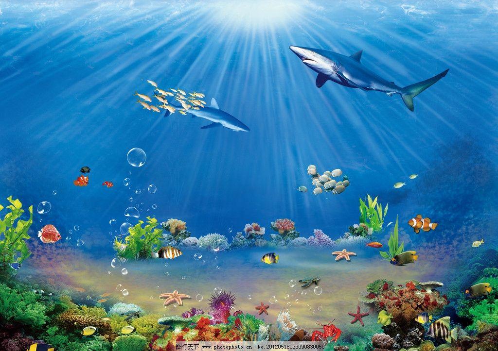 海底世界 海底 海洋世界 海底背景 新鲜鱼 鱼 海底鱼 虾 鱼缸 活鱼图片