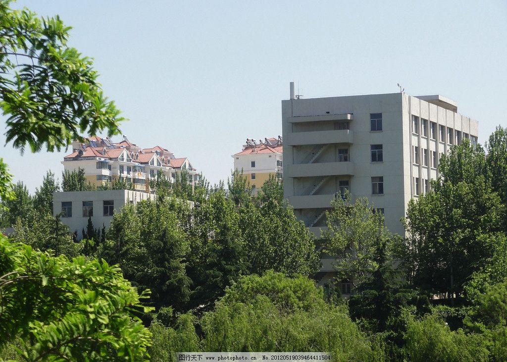 烟台建筑 红色尖顶楼房 平顶楼房 树木 蓝天 建筑摄影 建筑园林 摄影