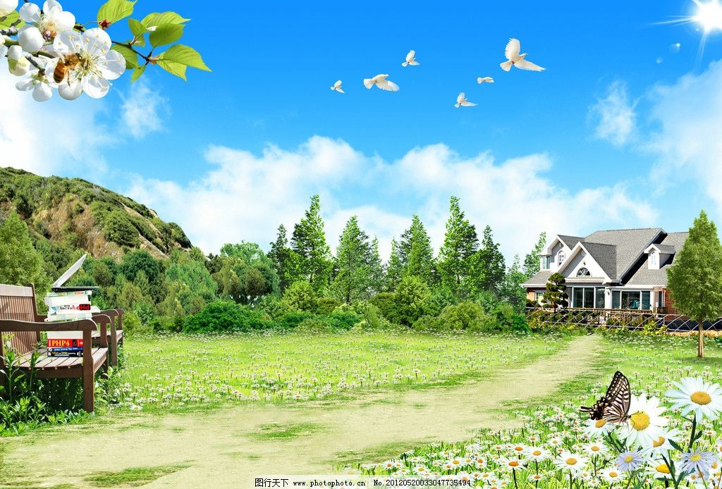 房地产 别墅 房子 草 草丛 草地 草原 花 白花 蜜蜂 蝴蝶 树 树木