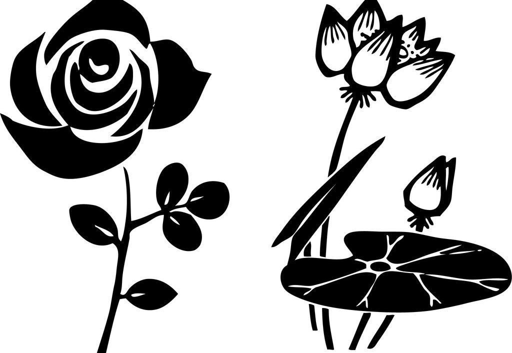 玫瑰荷花矢量图图片