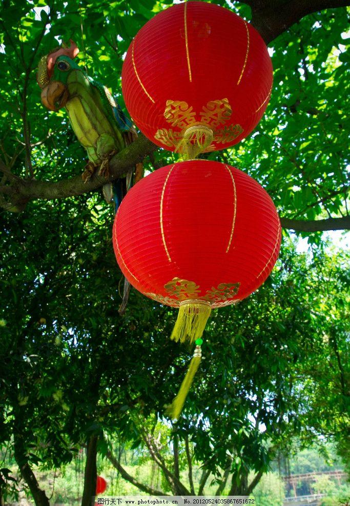 红灯笼 红色 树木树叶 生物世界 摄影 240dpi jpg