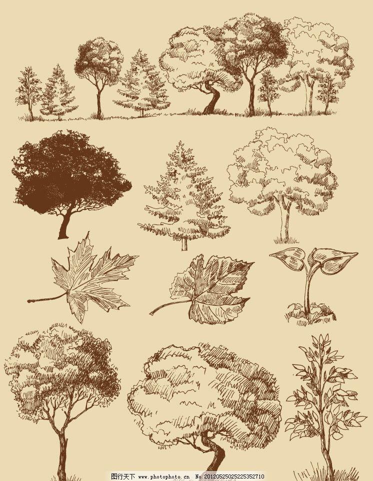 手绘树木树叶 手绘 树木 树叶 圣诞树 枫叶 剪影 素描 矢量 植物主题