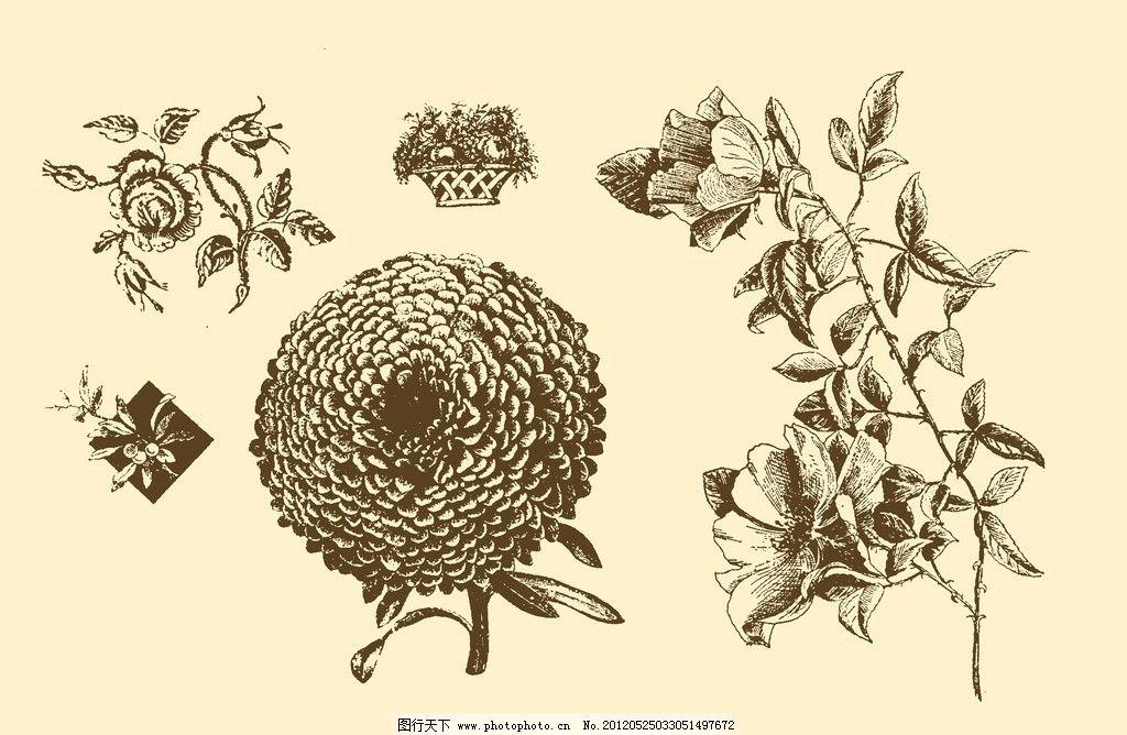 植物装饰画图片
