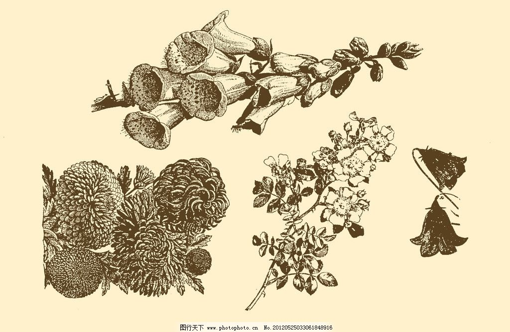 图案 插画 插图 版画 简笔画 风光 装饰画 黑板报 植物 钢笔画 花卉