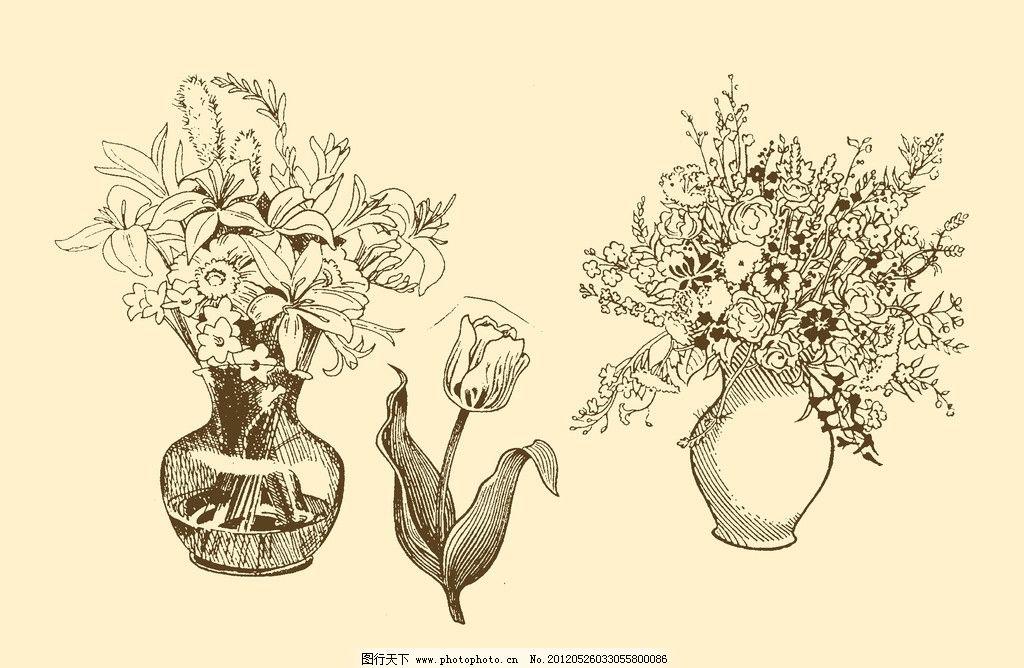 植物装饰画 图案 插画 插图 版画 简笔画 风光 装饰画 黑板报 植物