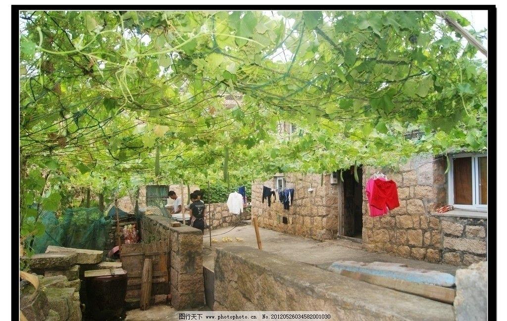 农家小院 葡萄架 石墙 石房子 晾晒 悠然 田园风光 自然景观 摄影 350