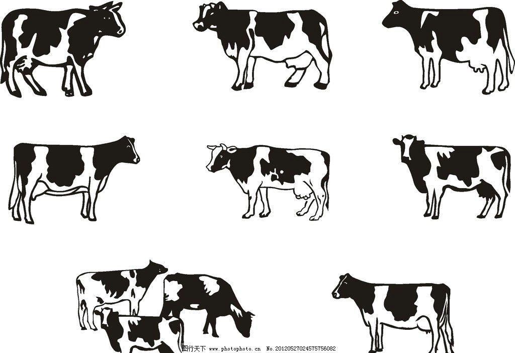 牛 奶牛 矢量图 黑白花 家禽家畜 生物世界 矢量 cdr