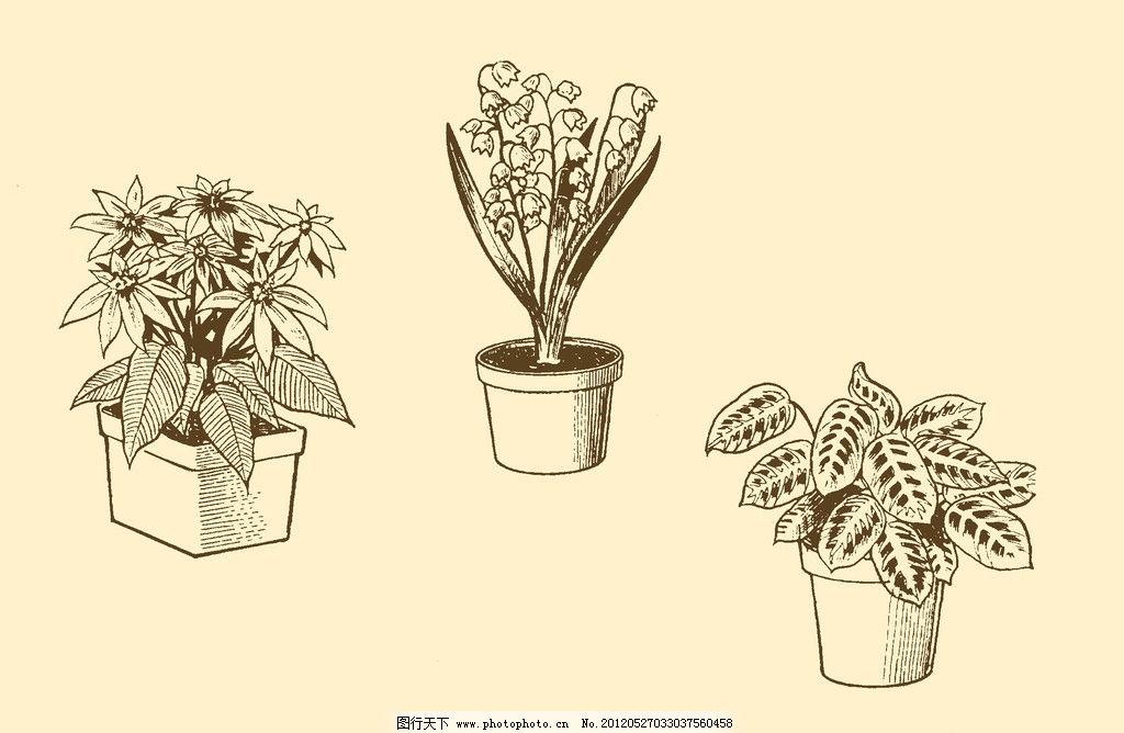 图案 插画 插图 版画 简笔画 风光 装饰画 黑板报 植物 钢笔画 盆栽