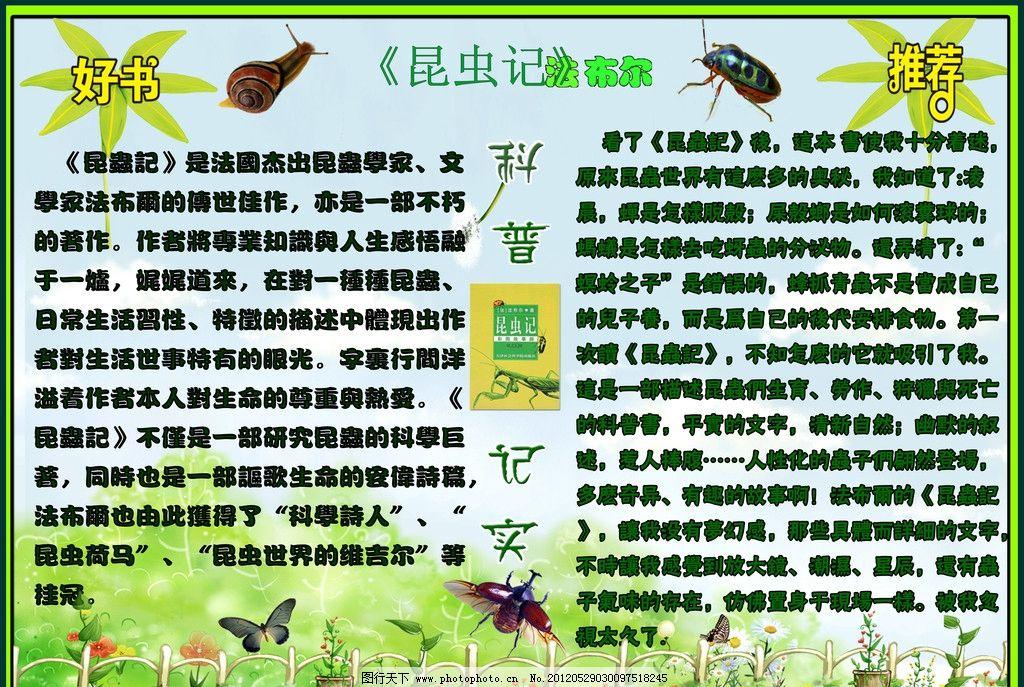 昆虫记手抄报设计 蟋蟀 毛毛虫 广告设计模板 源文件