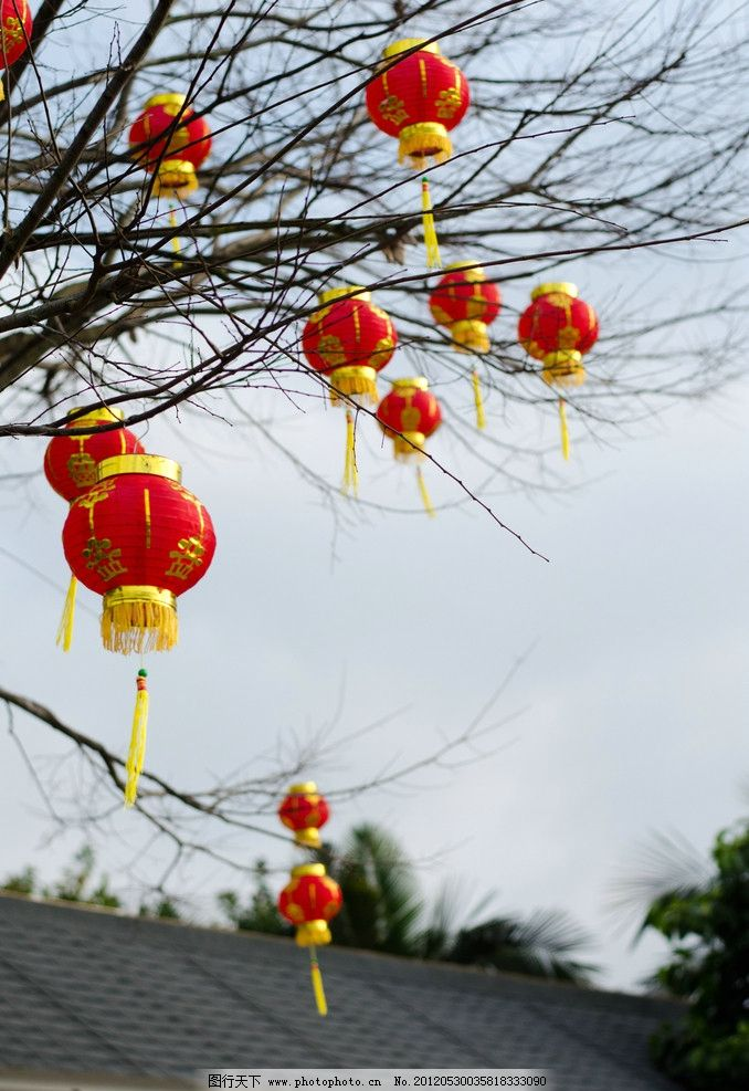 红灯笼 红色灯笼 树上灯笼 小灯笼 节日庆祝 文化艺术 摄影