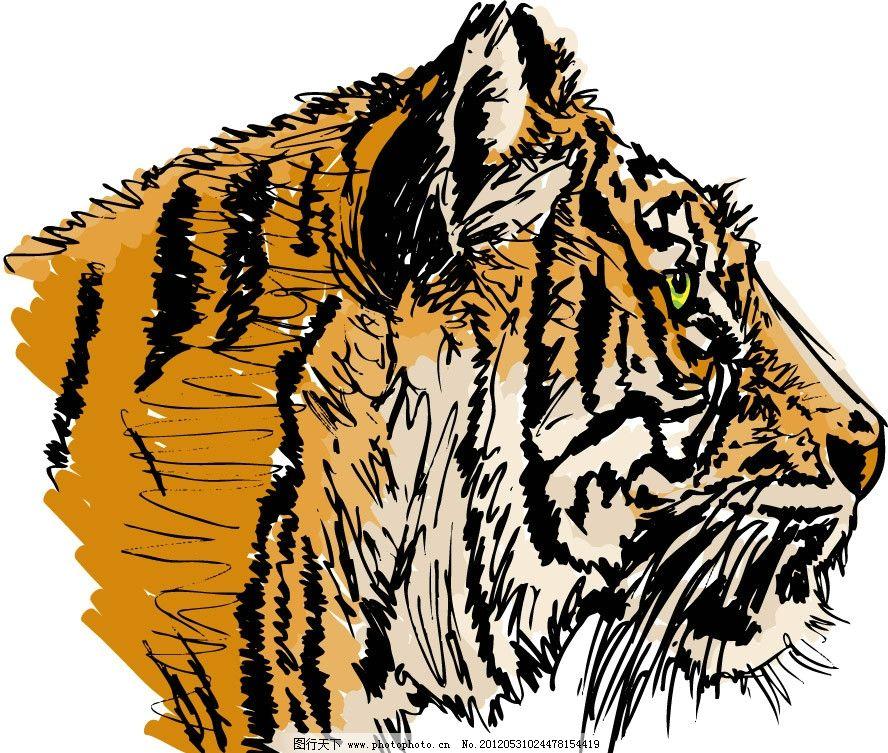 手绘老虎头 手绘 老虎 虎头 矢量 动物主题 野生动物 生物世界 eps