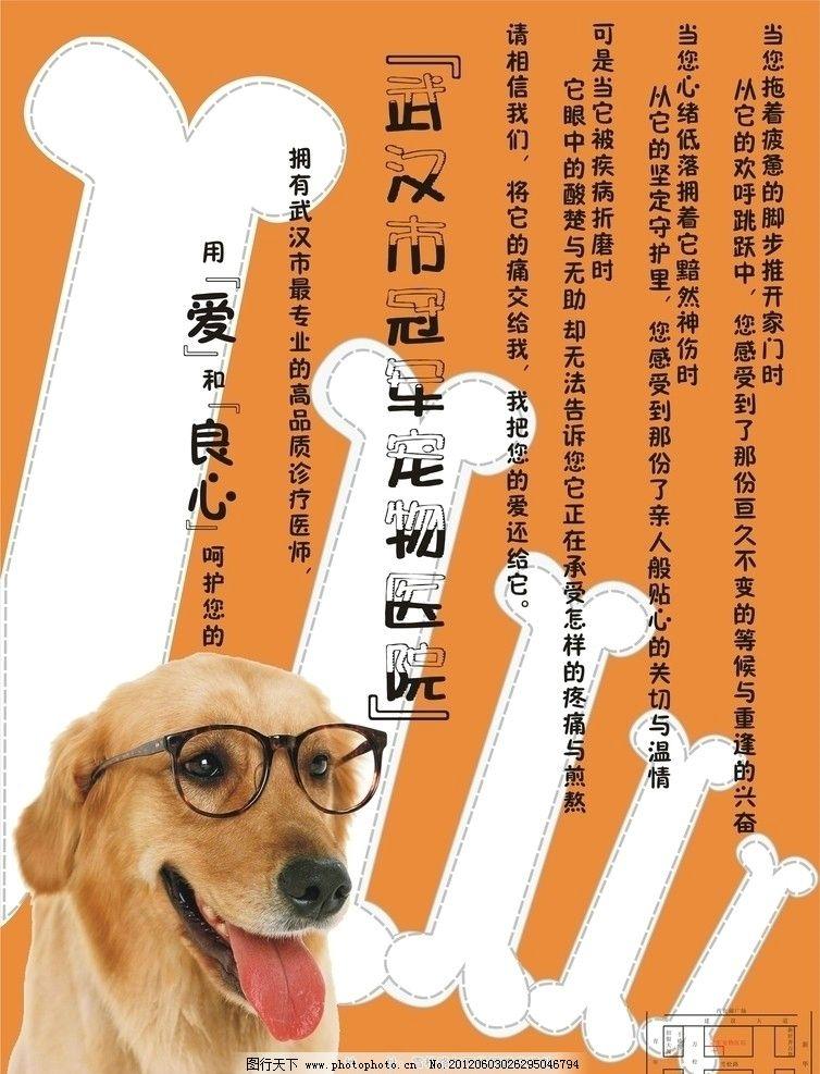 宠物医院宣传单图片