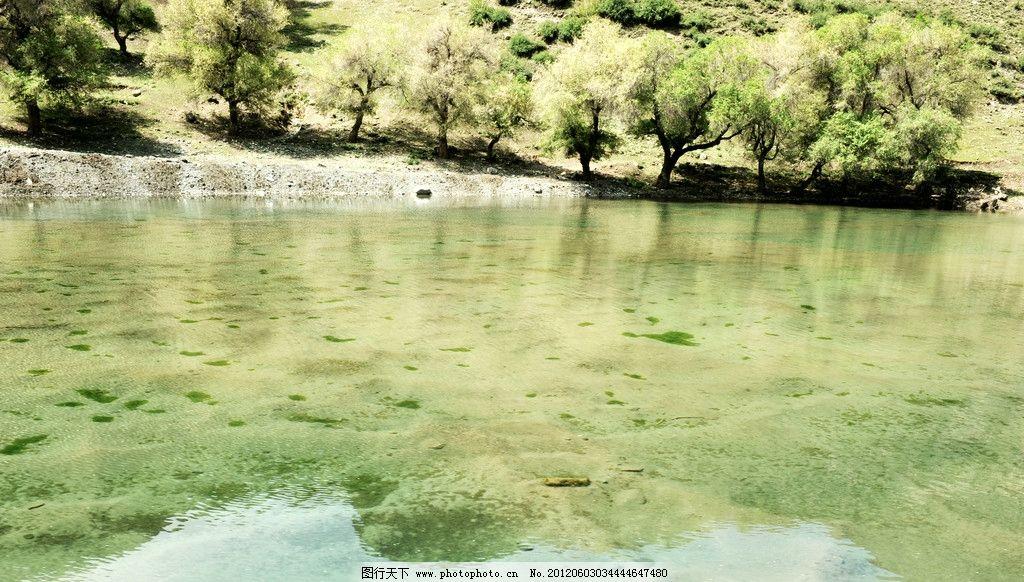倒影 天山天池风景区 新疆旅游 树林 水面 清澈 湖水 天山景色 山水