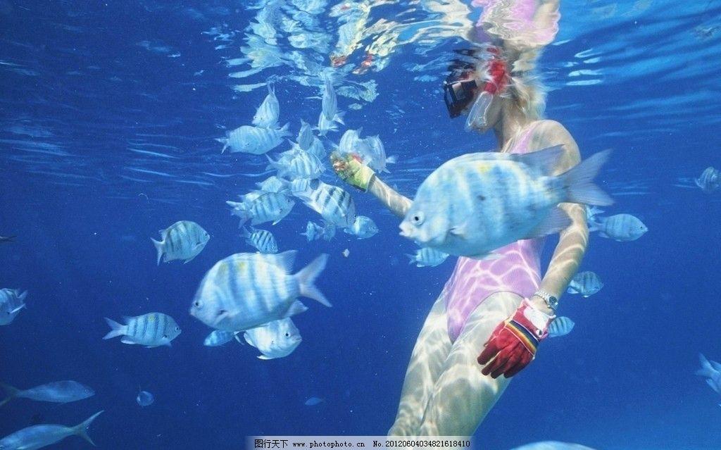海底世界图片_自然风景_自然景观_图行天下图库