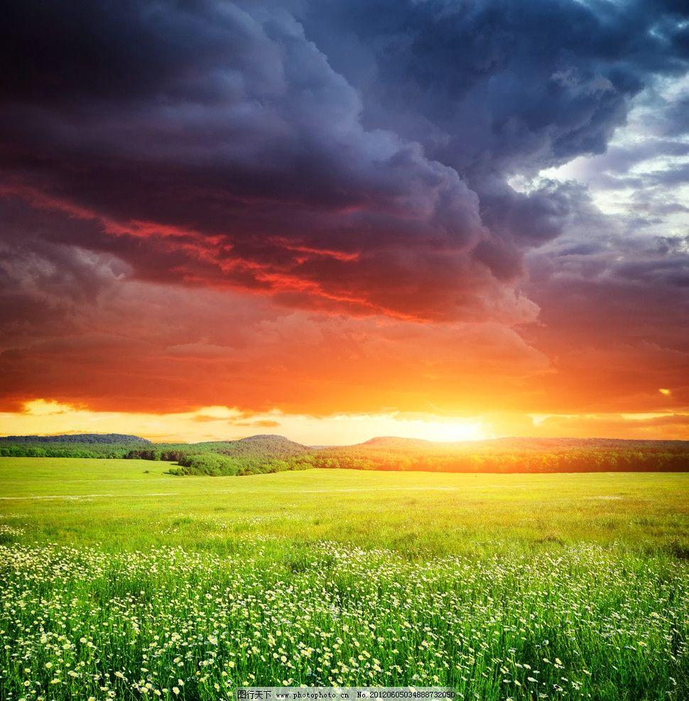 日出风景 太阳 阳光 黎明 早晨 金色光芒 野花 小草 生态环境