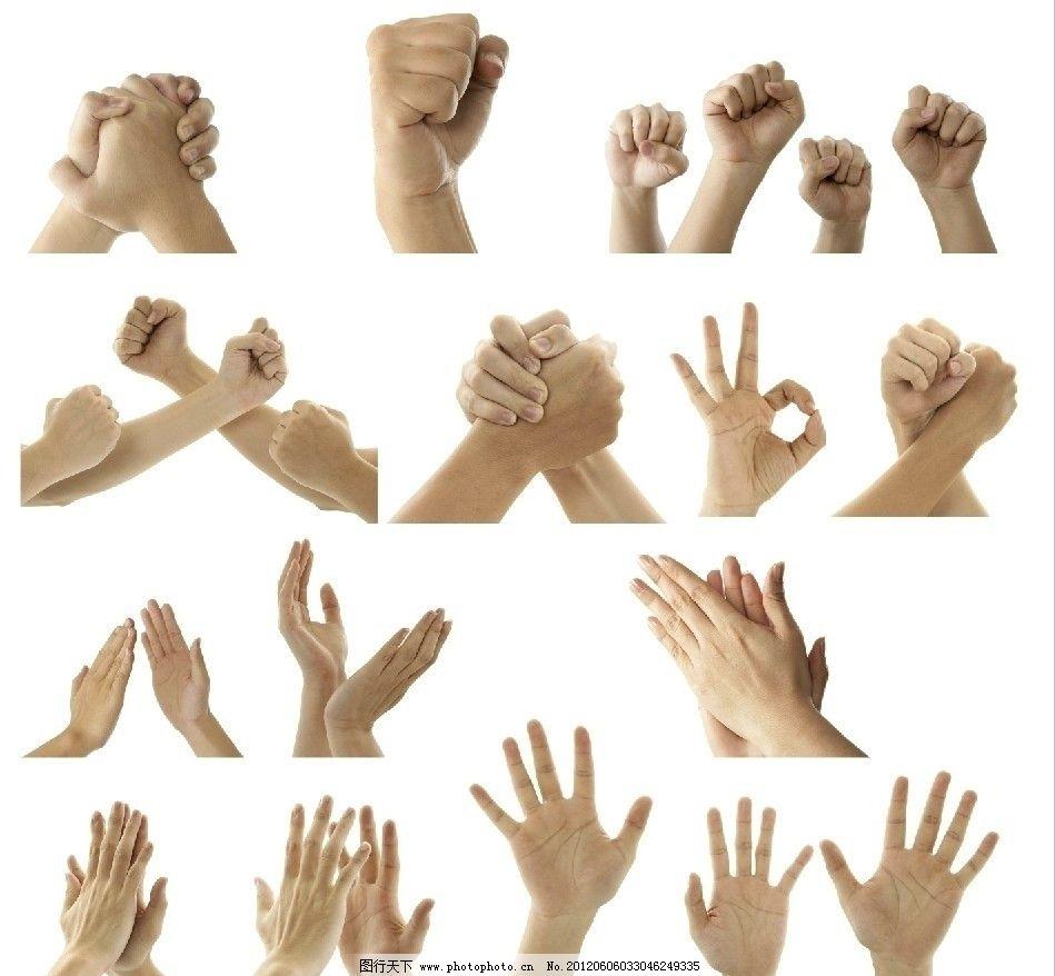 手势 各种手势 捧起的手 扣住的手 拳头 手势素材 拍手 鼓掌 合作 ok