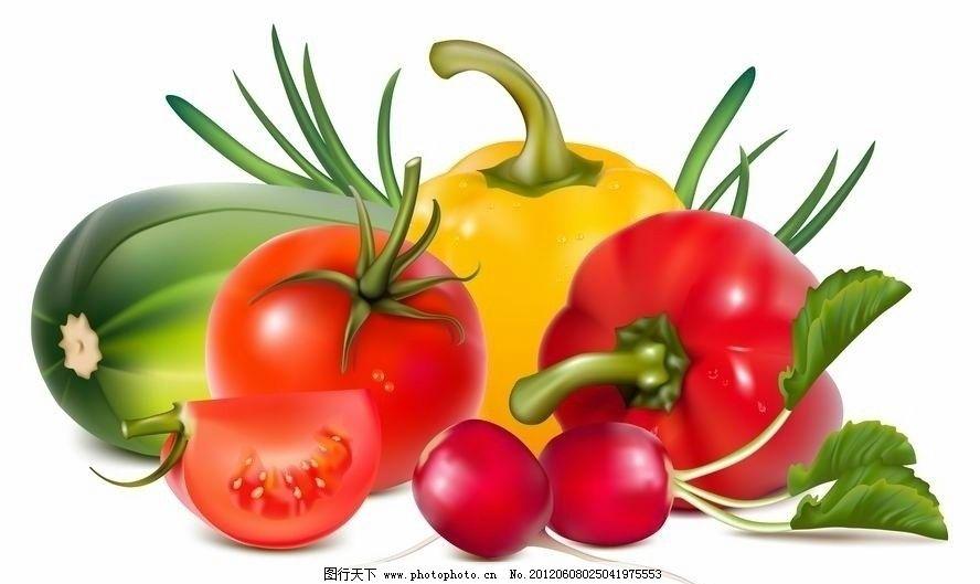 手绘蔬菜图片_蔬菜_生物世界