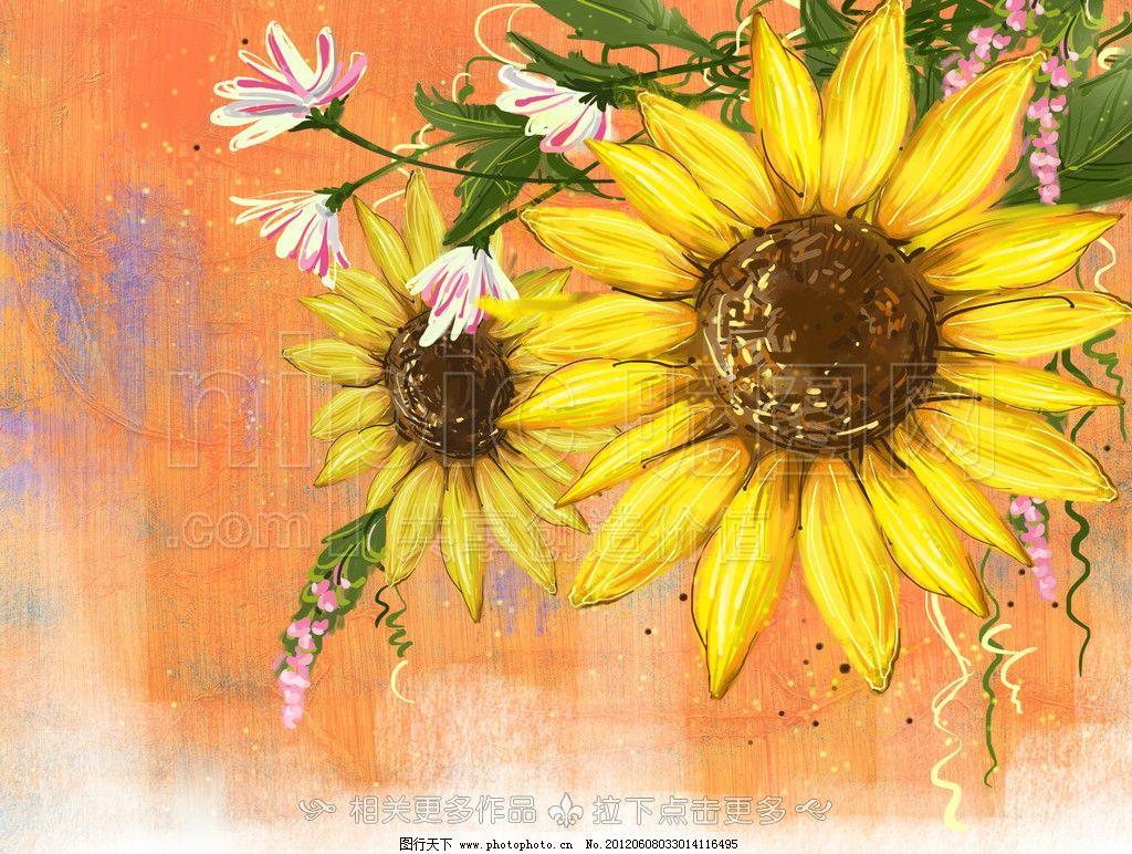 向日葵 太阳花 手绘向日葵
