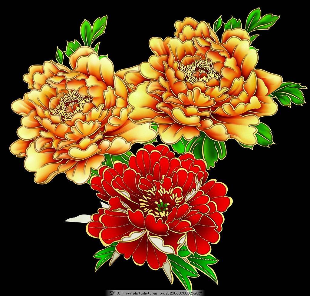 牡丹 金边牡丹 红色牡丹