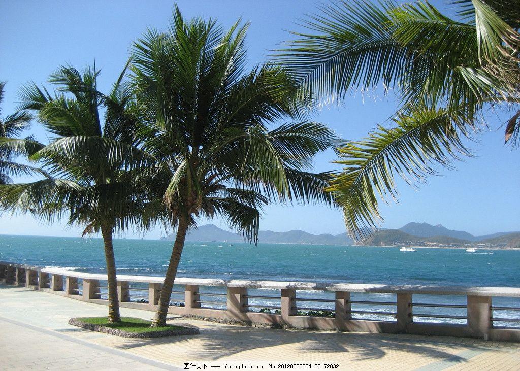度假圣地 海南 三亚 大海 公园 椰树 游船 小岛 海岛 海岸线
