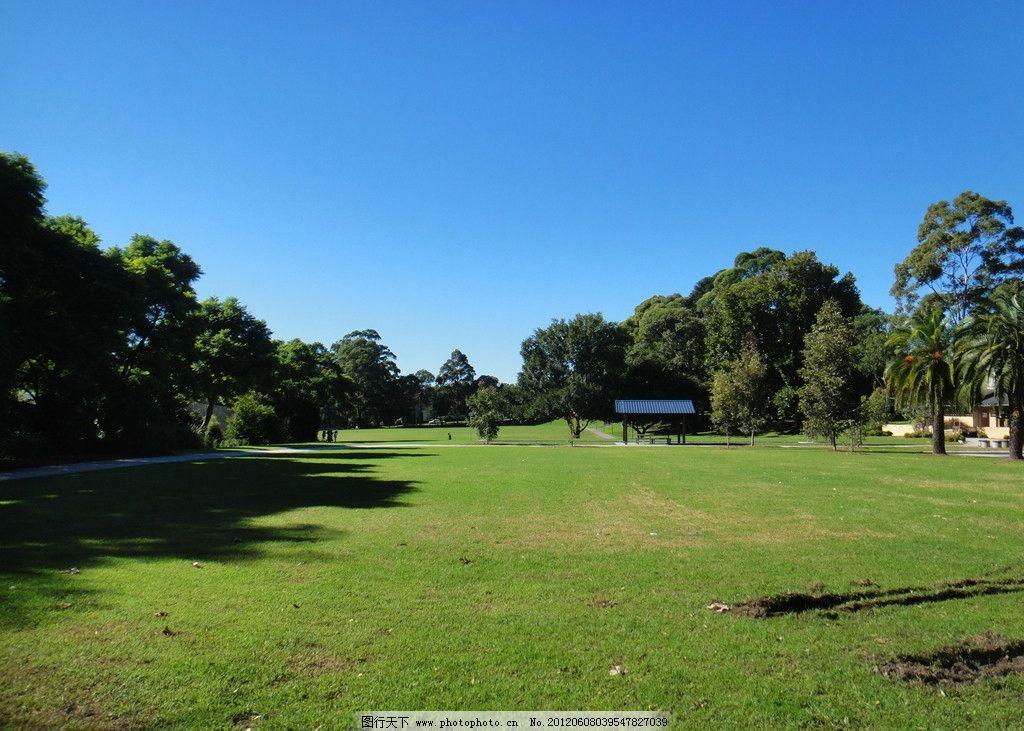 蓝天绿草树木 蓝天 绿茵 树木 草地 风光 清新 风景 自然 自然景观
