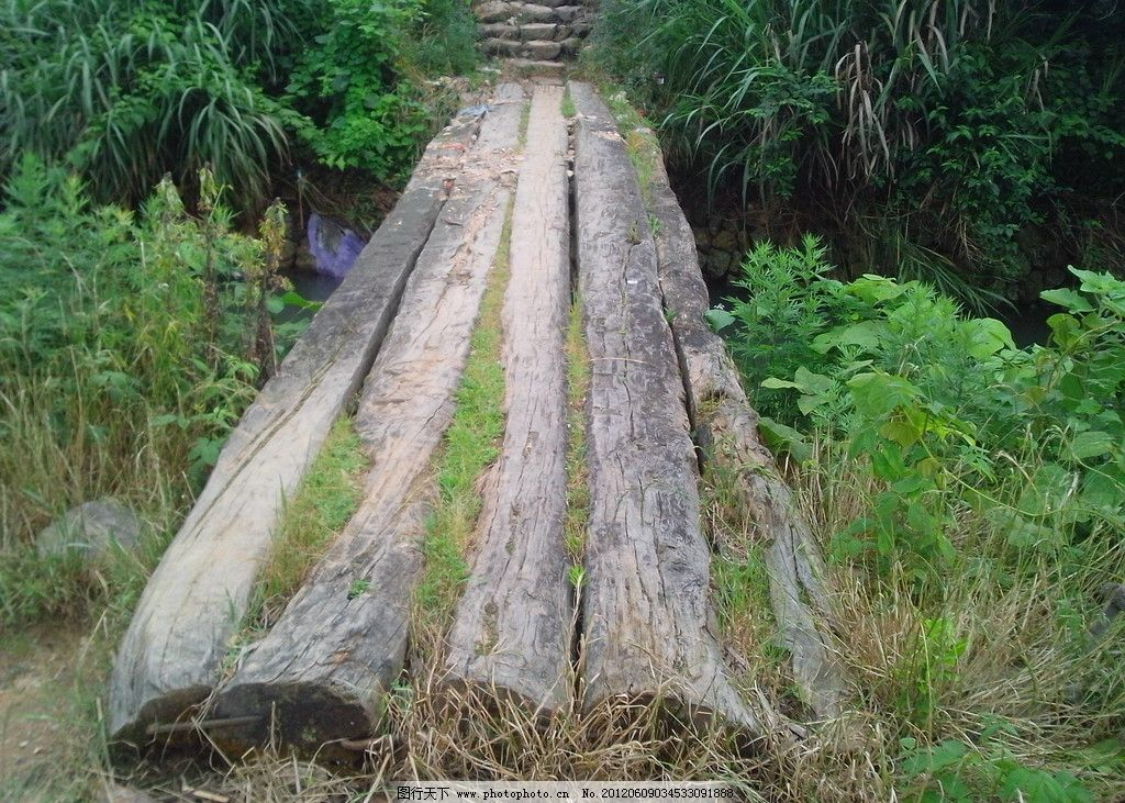 乡下小桥 木头桥图片