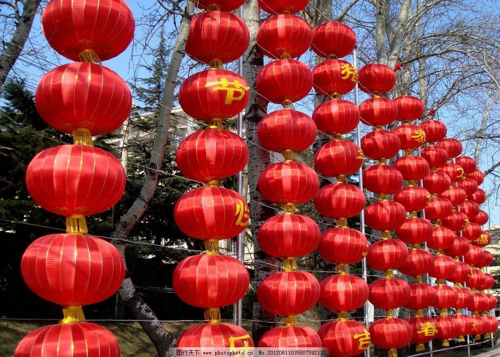红灯笼 灯笼 过年 新年 公园 生态公园 喜庆 新春 节日庆祝 文化艺术