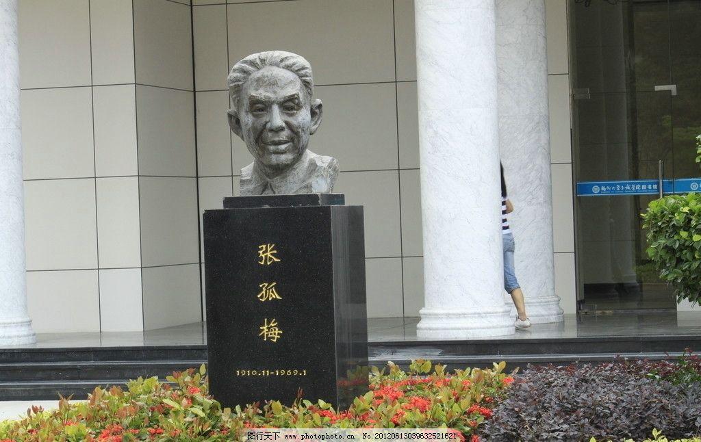 张孤梅雕塑 福州大学校园雕塑作品 石雕 张孤梅石像人头 雕塑 建筑