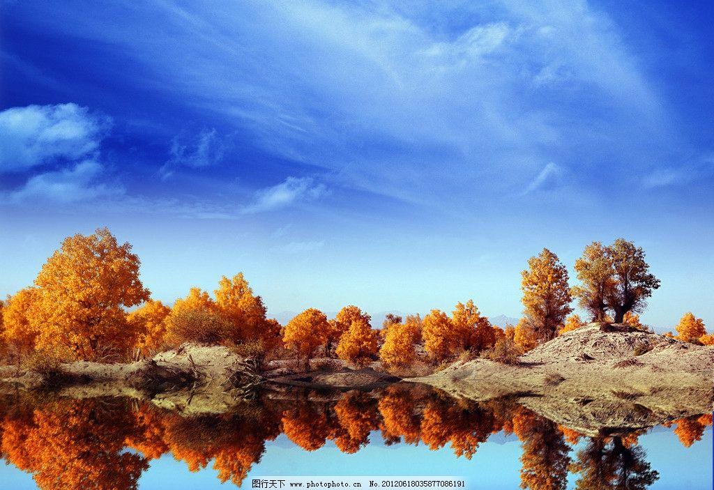 胡杨 倒影 蓝天 白云 水面 树木树叶 生物世界 摄影 300dpi tif