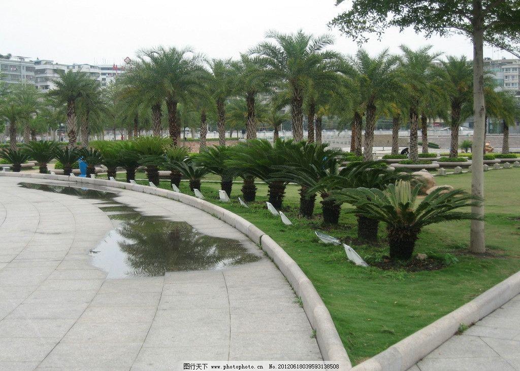 公园一角 公园 一角 海滨公园 海边 湛江 草地 花草 园林建筑 建筑图片
