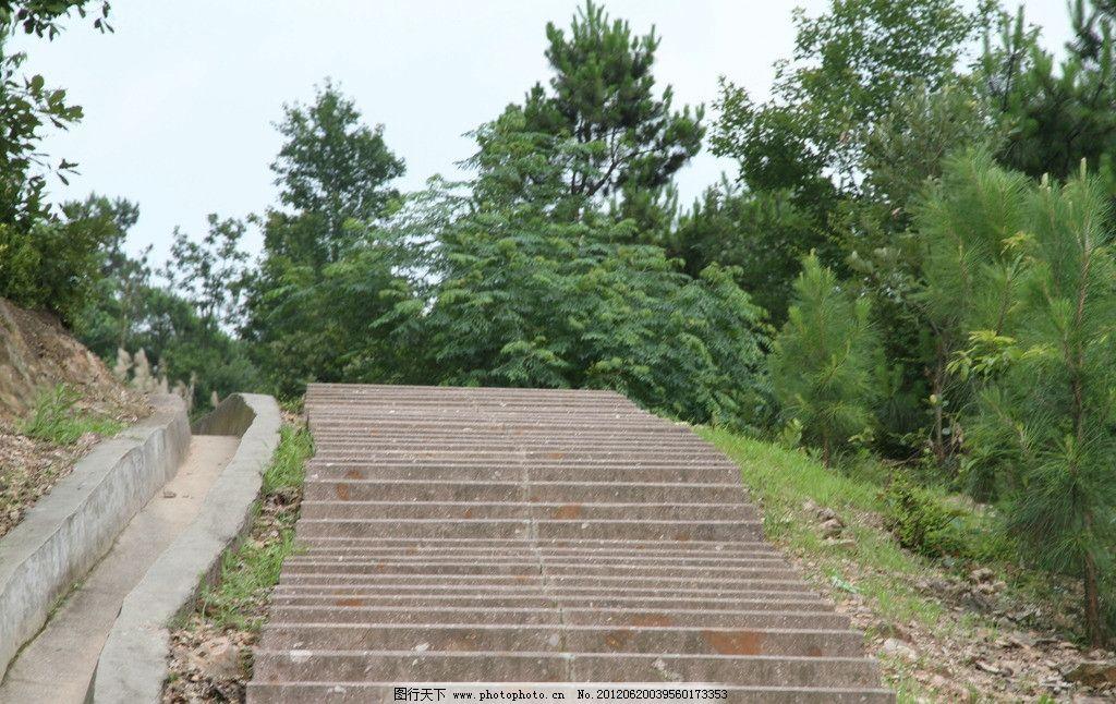 园路阶梯 阶梯 园路 森林景观 登山路 园路绿化 公园道路 摄影园林