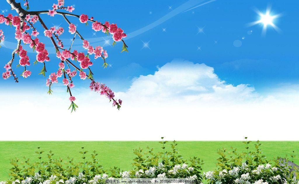 太阳光 闪 蓝天 白云 草地 摄影 源文件 景观设计 环境设计 花草树木