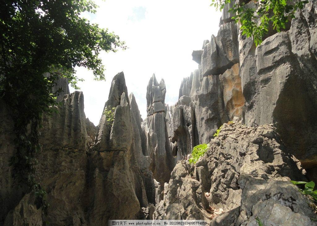 云南石林石头 蓝天 白云 风景 耸立 景观 摄影