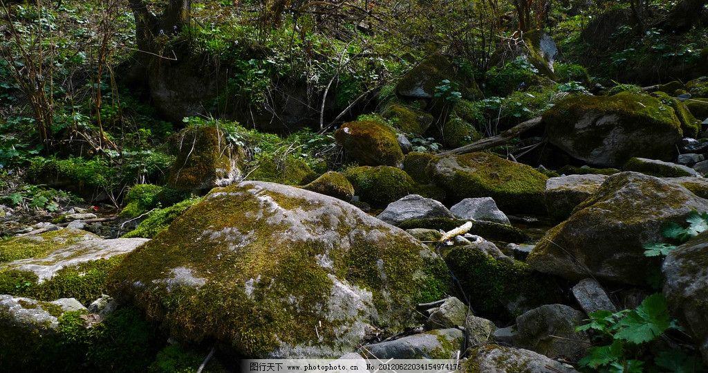 青苔石头 西安祥峪森林公园 山路 风景 旅游摄影