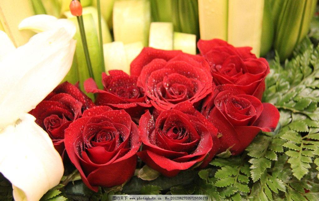 玫瑰花露 玫瑰 艺术插花 餐厅摆花 玫瑰花 花草 生物世界 摄影 72dpi