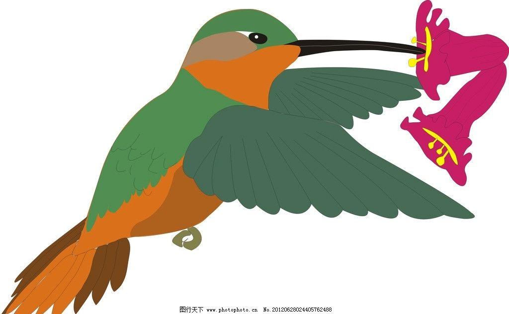 鸟 矢量鸟 生物世界 美术绘画 鸟类 矢量鸟类 矢量图库 矢量cdr 动物