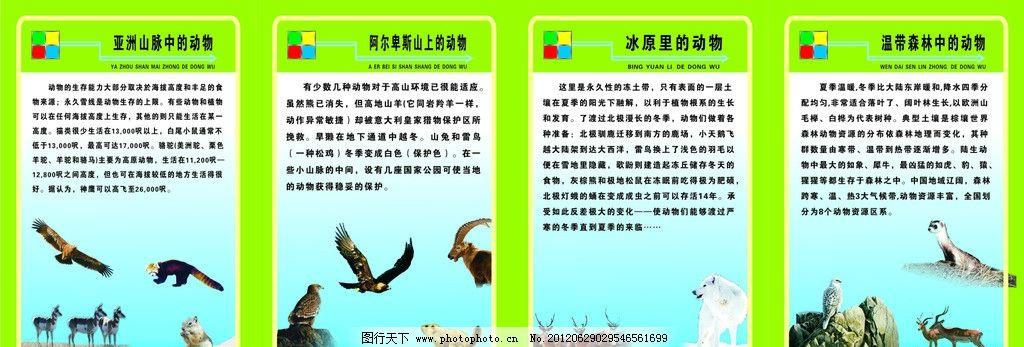ag游戏直营网|平台科普知识 学校展板图片