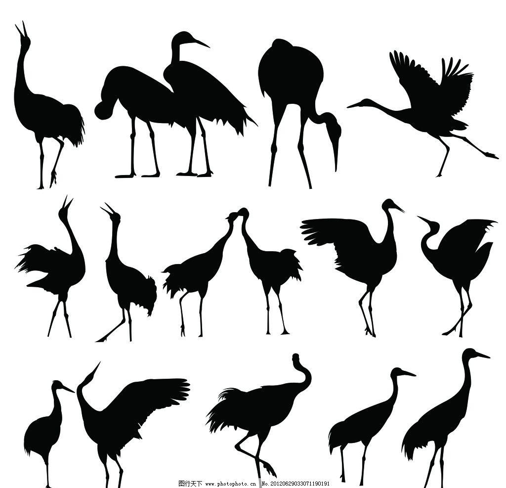 丹顶鹤剪影图片