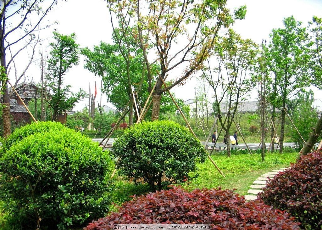 生态公园 公园 园林 草地 绿地 园艺 大树 树林 树荫 生态 自然 自然