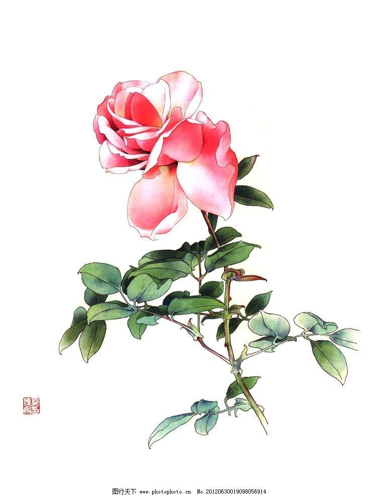 独艳 美术 中国画 工笔画 花卉画 月季花 国画艺术 国画集71 绘画书法